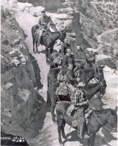 The Schnur family riding mules into the Grand Canyon, accompanied by a guide.